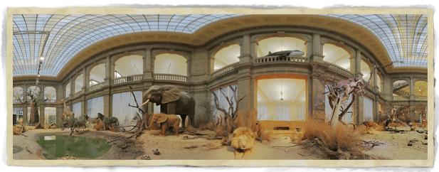 Führung durch die Museumsausstellung inklusive